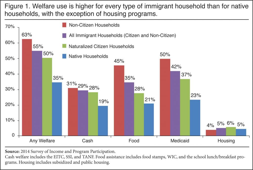 Welfare and Immigration